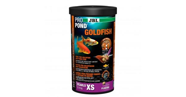 site de rencontre Goldfish rencontres uchicago