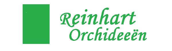 Reinhart Orchideeën